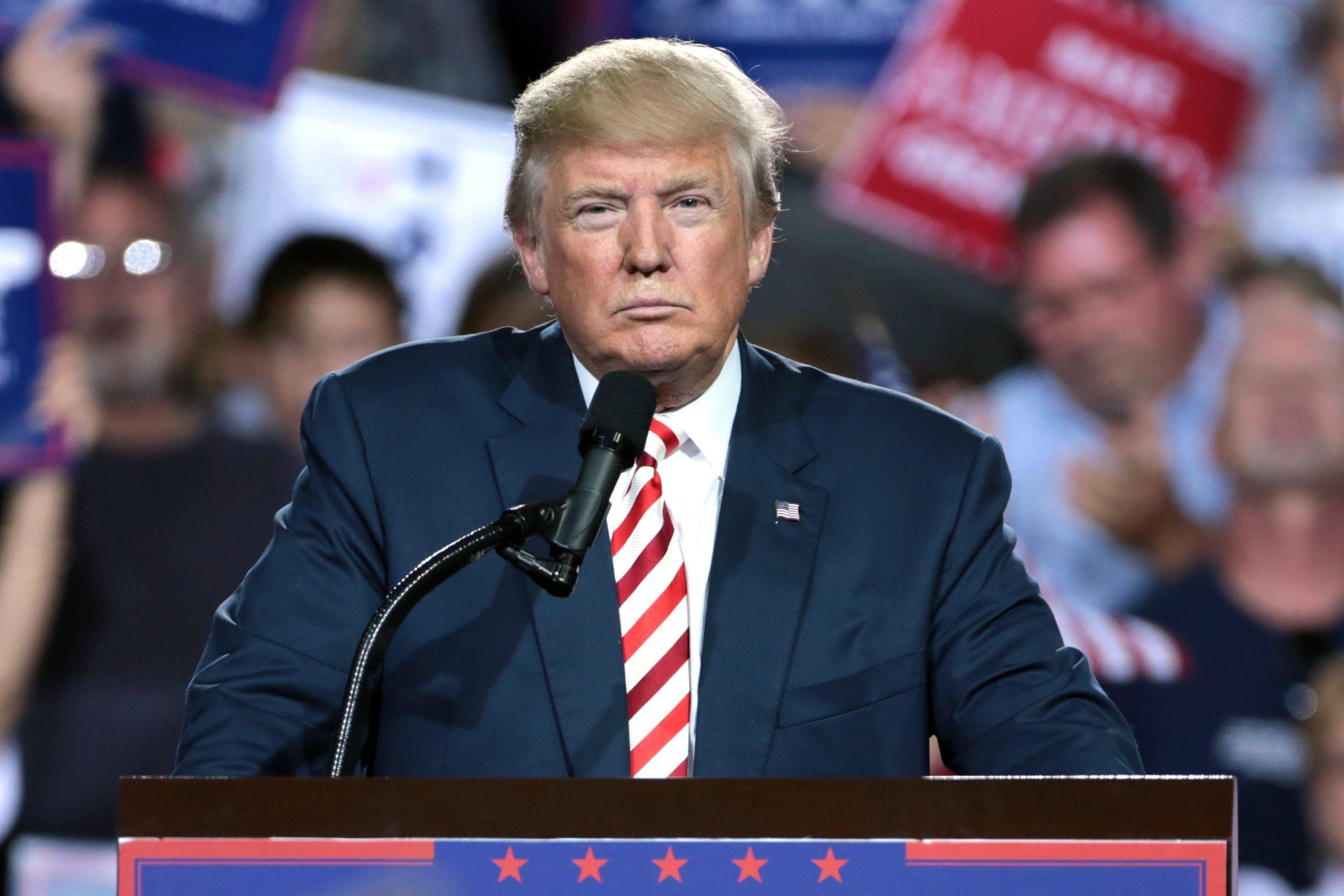 Donald Trump 29496131773 scaled