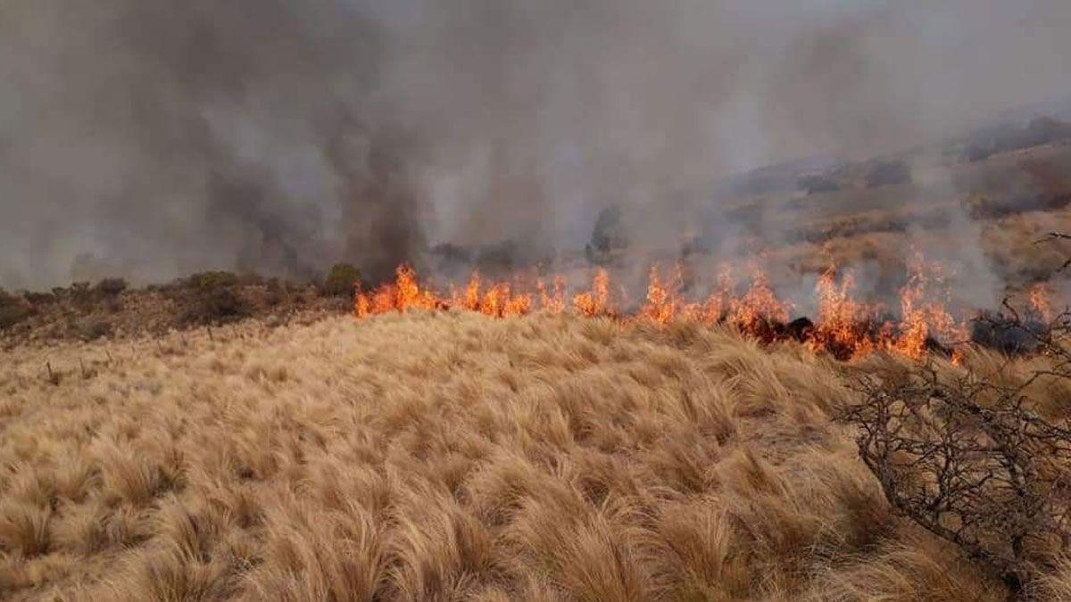 la sequia propicia las condiciones la proliferacion incendios
